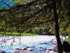 Алтай, Тюнгур, река Кучерла
