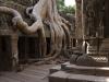 Камбоджа, Ангкор, храм Та Прохм
