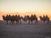 Закат в пустыне Гоби, Монголия