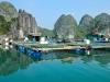 Вьетнам, остров Кат Ба. Плавучая деревня