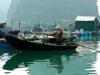 Вьетнам, остров Кат Ба. Плетенная лодка