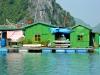 Вьетнам, остров Кат Ба. Дома в плавучих деревнях