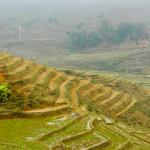 Сапа (Sapa) и её рисовые поля