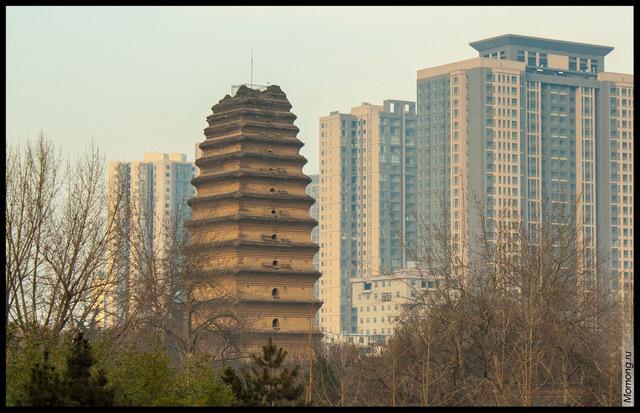 Малая пагода диких гусей и городские высотки