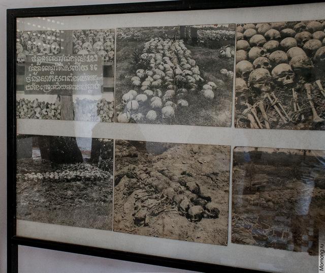 Раскопки на полях смерти